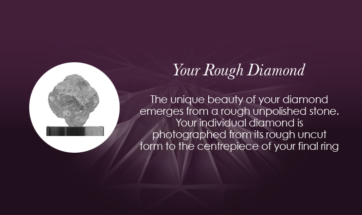 The One - Your Rough Diamond