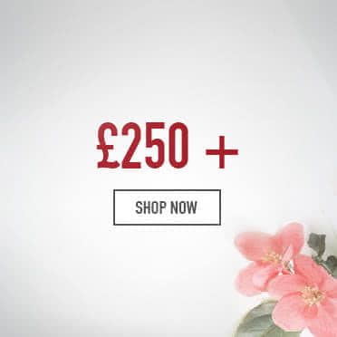 Mother's day gifts £250 and over - Shop Now