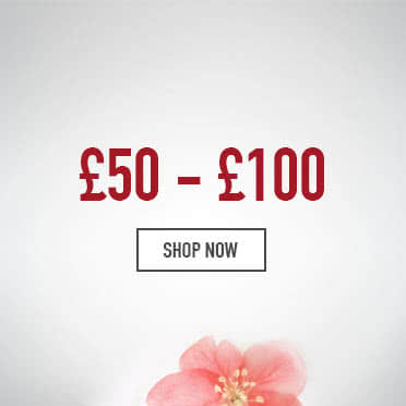 Mother's day gifts £50-£100 - Shop Now
